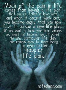 life plan pic